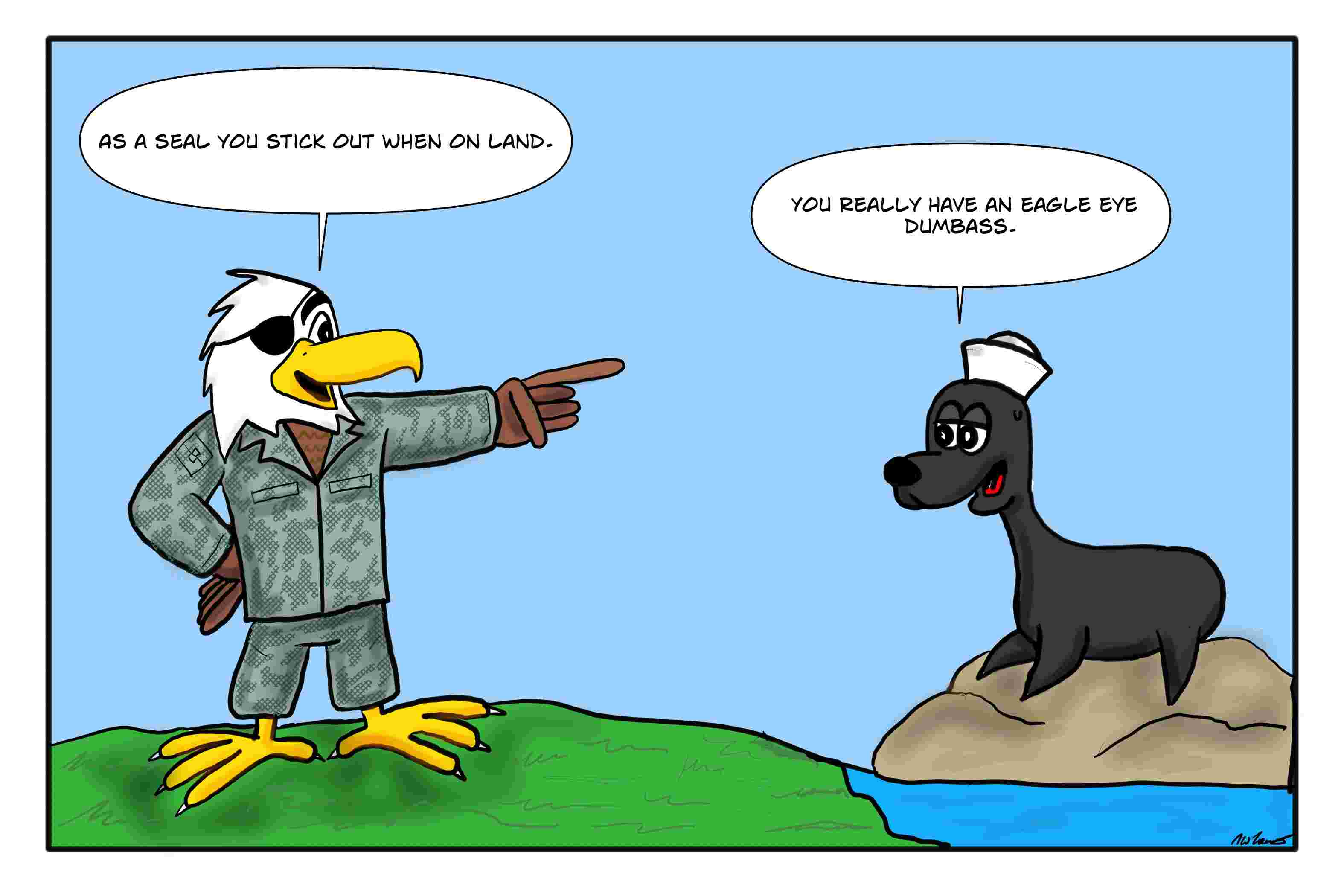 air-force-eagle-eye-navy-seal