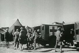 429th medical ambulance battalion WW2 soldier story.
