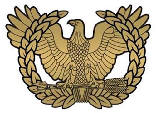 army warrant officer crest is the rising eagle